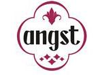 logo_angst